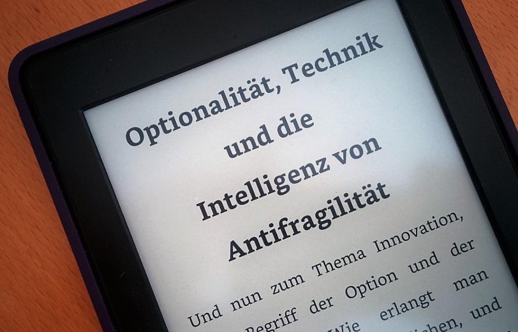 Antifragilität und Technik